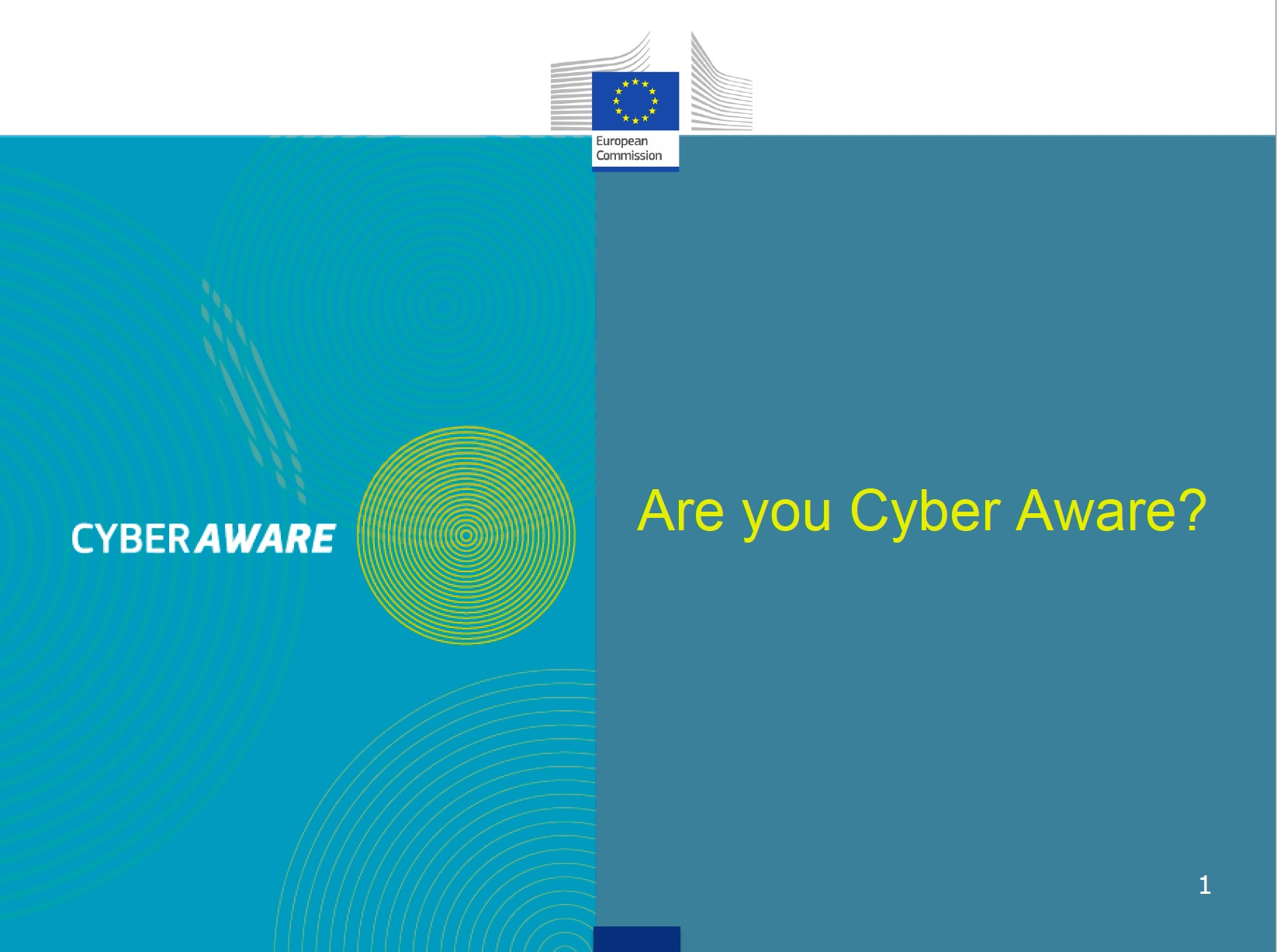 DG DIGIT cyber aware presentation
